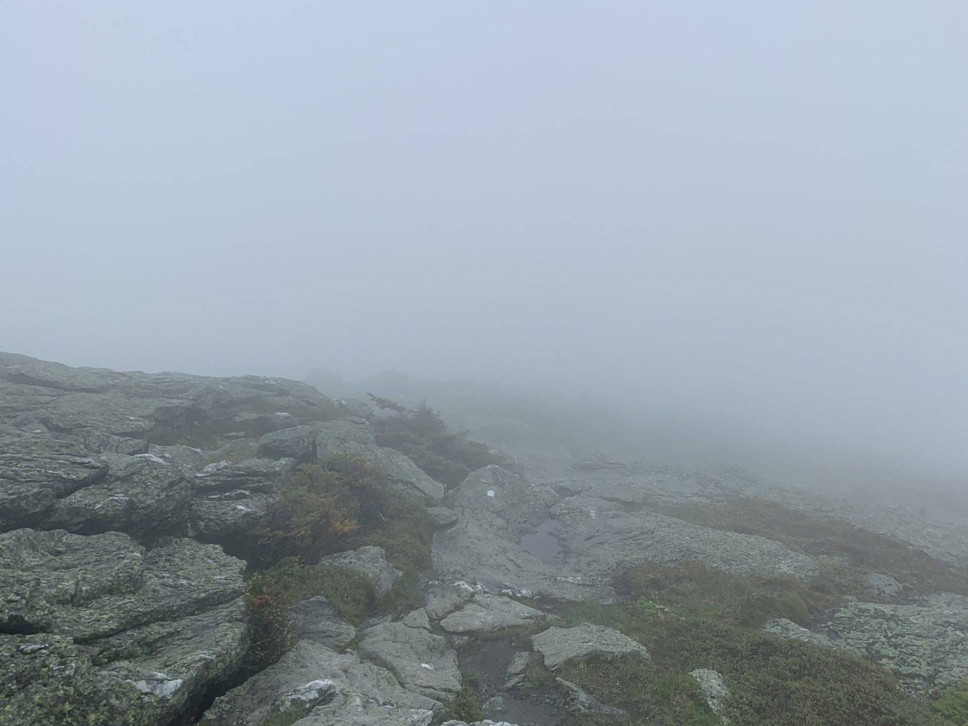A misty summit peak on the Vermont Long Trail